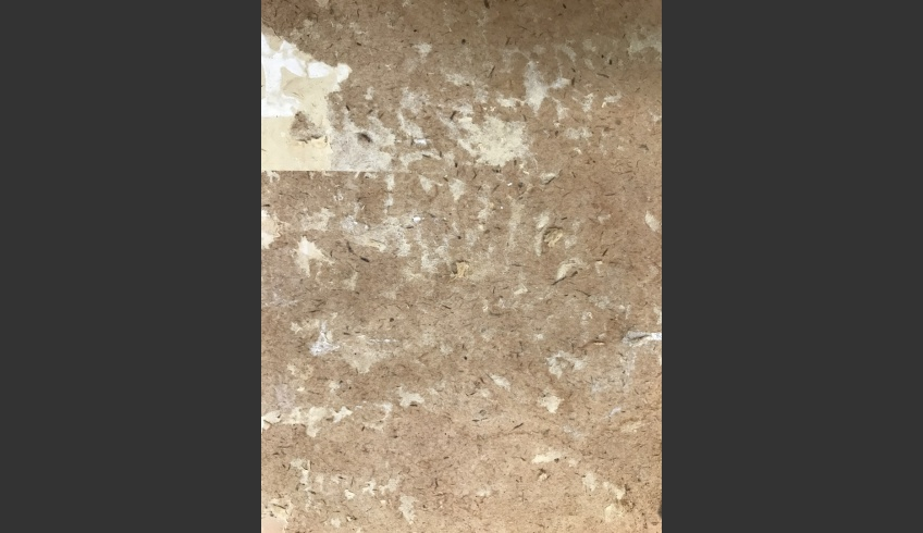 ill 21. Vapour-cleaned cardboard before additional cleaning. For final cleaning up wallpaper fragments still on cardboard were removed with cotton-swabs dampened in a weak methyl-cellulose solution and a metal spatula. Simultaneously loose fibres on the cardboard surface were fixed.
