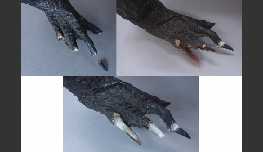 fig 27. The toes turned out to be strong and stabile and did not need additional support. A mixture of PVA glue and wheat-starch paste was used for modelling the toes.